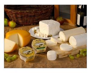 St Tola cheese