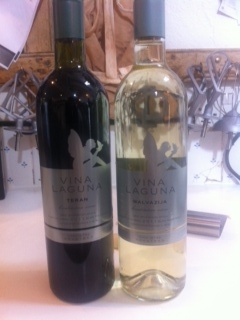 Vina Laguna wines at Ballymaloe Cookery School